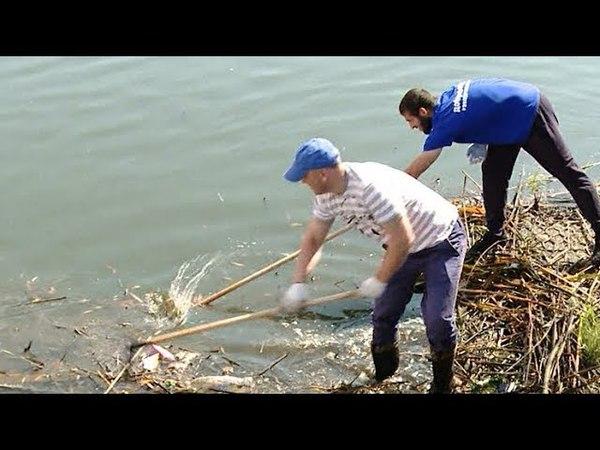 «Чистые игры» стартуют сегодня в Краснодаре