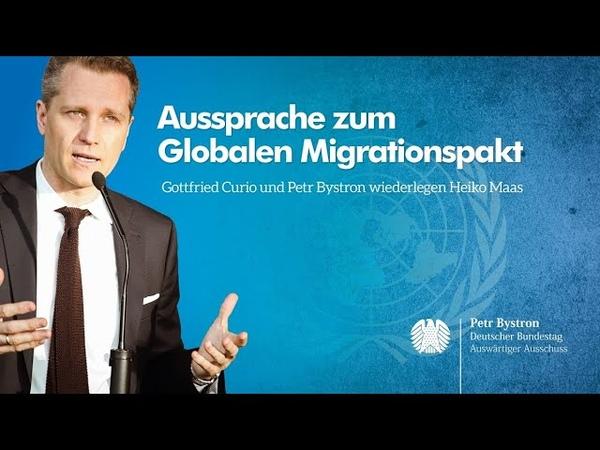 Migrationspakt entlarvt! | Petr Bystron Gottfried Curio (AfD) reagieren auf Heiko Maas