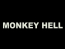The Reporters - Monkey Hell
