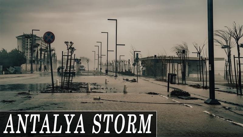 POWERFUL STORM ANTALYA Who washed up on shore Кого вынесло на берег