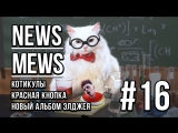 News Mews #16. КотоКаникулы, Элджей, Крид