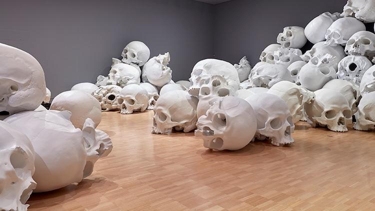 100 гигантских черепов в музее.