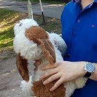 Аватар Александра Токмачёва