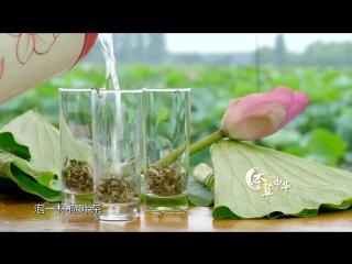 本草中华.Herbal.China.City.2017.EP02.WEB-DL.1080P.X264.AAC.Mandarin.CHS.HQC