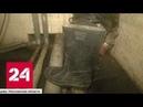 Жилой комплекс Гусарская баллада в Одинцово уже полмесяца утопает в нечистотах Россия 24