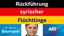Bernd Baumann AfD Rückführung syrischer Flüchtlinge
