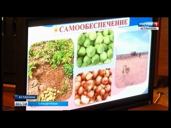 Астраханских осужденных предлагают привлечь к изготовлению консервов