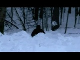 SLEDDING SASQUATCH ENCOUNTER CAPTURED ON VIDEO