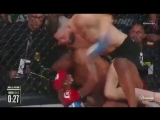 Im still laughing. Paul Daley is a treas...llator199 (360p).mp4
