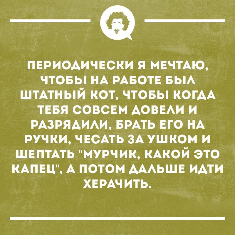 https://pp.userapi.com/c846418/v846418865/1ff1fe/coiZ2iB00p0.jpg