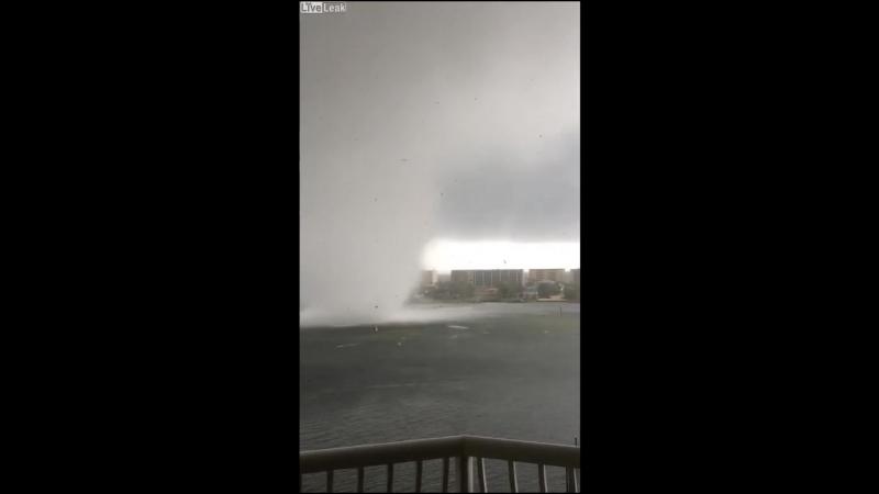 Во Флориде засняли бешенный торнадо
