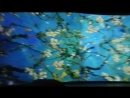 MOV 0632 15 Винсент ван Гог Цветущие ветки миндаля нидерландский постимпрессионист mp4