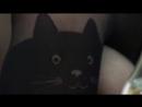 ~Белая Роза~ и черный котейка