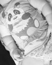 Зульфия Хамизова фото #3