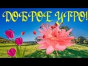 Доброе утро зажигательная музыкальная видео открытка с добрым утром хорошим днем СУПЕРПОЗИТИВ