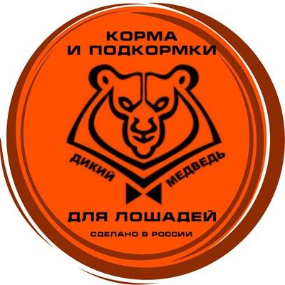Медведь Дикий