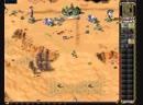 C C Red Alert 2 YR (Dry Head) 270119(2) - Aleksandr vs Artemis