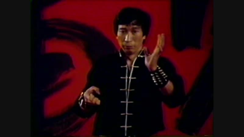 Хун Гар. Тао Тигр и Журавль. 1981 г.