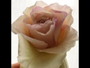 Двухцветные крайние лепестки розы сборка МК и кое что еще от Риты