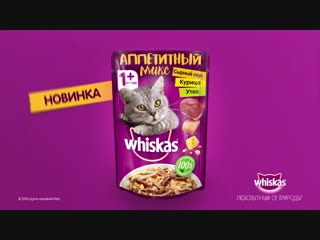 RUSSIA_WHISKAS_SocialContent(VideoPosts)_6sec_2018_137