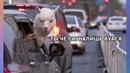 Про животных/Смешные картинки про животных ч.3.