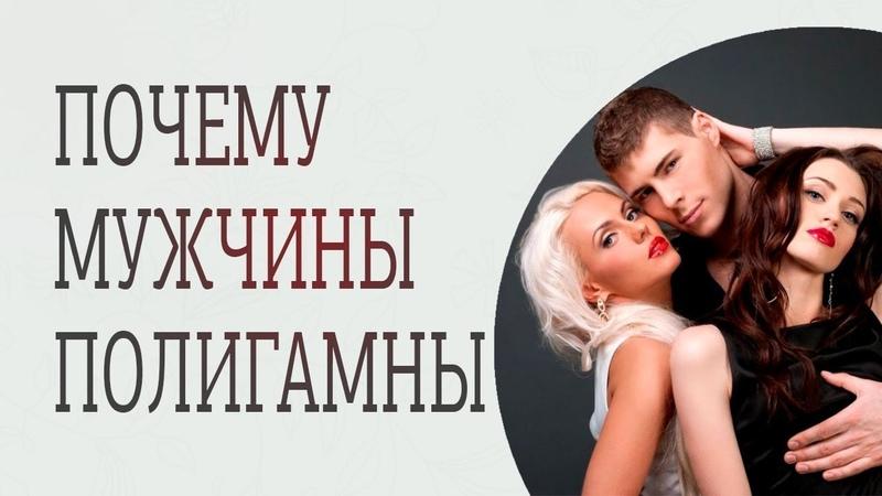 Все мужчины полигамны Полигамность мужчин это нормально Полигамность мужчин миф или правда Сатья