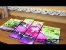 Модульная картина орхидея и зеленый бамбук
