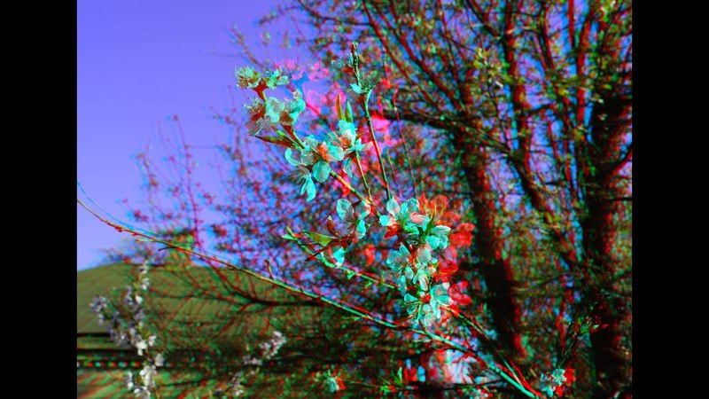 3D Anaglyph Spring Super 3d video
