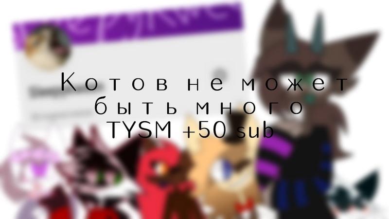 Котов много не бывает (tysm 50 sub)