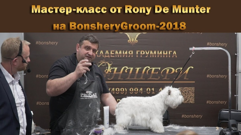 Мастер-класс от Rony De Munter, члена EGA, в рамках конкурса BonsheryGroom-2018
