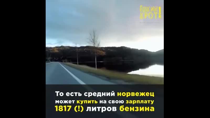 Где бензин дороже — в Норвегии или в России ult ,typby ljhj;t — d yjhdtubb bkb d hjccbb