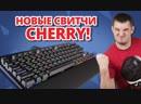 [ — О девайсах понятным языком] САМЫЕ БЫСТРЫЕ СВИТЧИ! ✔ Обзор Игровой Клавиатуры Corsair K65 RapidFire!