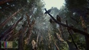 The Elder Scrolls VI Valenwood READ THE BLOODY DESCRIPTION BEFORE COMMENTING