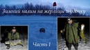 Зимний налим на жерлицы и удочку / Winter burbot on imitation fish and fishing rod