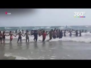 На озере Мичиган для поиска утонувших построили живую цепь из людей