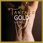 Llewellyn альбом Tantric Gold