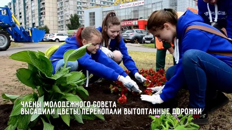 День газона» впервые отметили в Приморском районе. (20.06.2018)