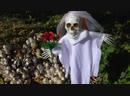 Кукольный спектакль на природе грибы и кукла