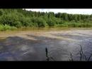 р Койва вода очень большая