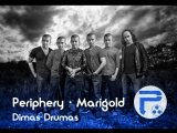 Periphery Marigold (drum cover by Dima GER.)