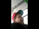 Обезьяна в автобусе