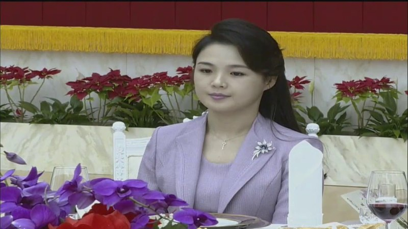 Choson TV: 경애하는 최고령도자 김정은동지께서 중국공산당 중앙위원회 대외련46973