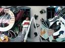 Radical Simplicity Frank Stella A Retrospective