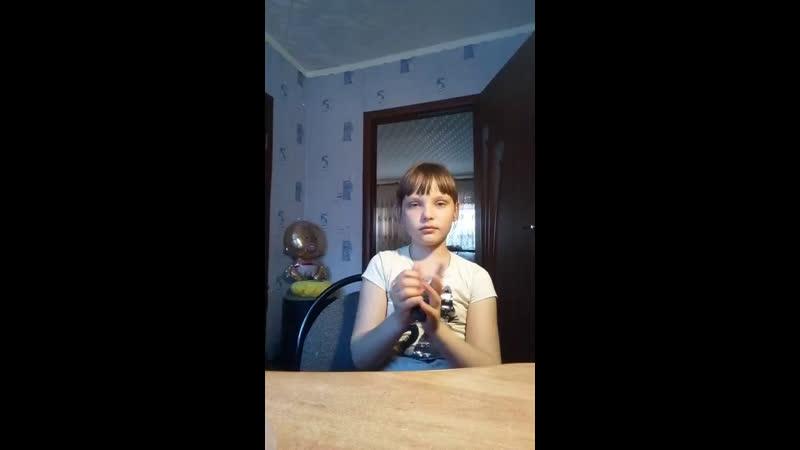 Анастасия Шевченко - Live