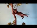 Смешные коты и кошки ДО СЛЁЗ Приколы с Котами 2018 Видео Коты