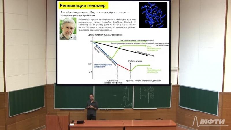 09. Методы анализа белков. Репликация ДНК. Репарация ДНК. Транскрипция прокариот