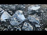 53 секунды красоты: смотрим, как архангельский ледоход уходит в закат