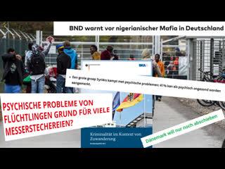 Studie aus holland - geisteszustand flüchtlinge + bnd: warnt vor nigerian - mafia - black axt + bka: kriminalstatistik migration
