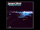 James Blunt - Goodbye My Lover (Official Instrumental)