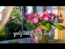 Einen wunderschönen Guten Morgen 🌼 a beautiful good morning_low.mp4